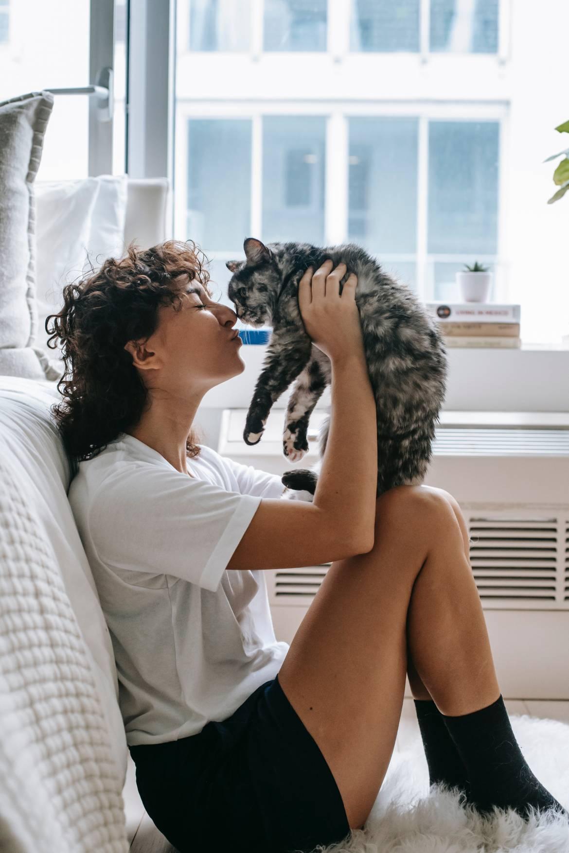El bienestar de nuestras mascotas
